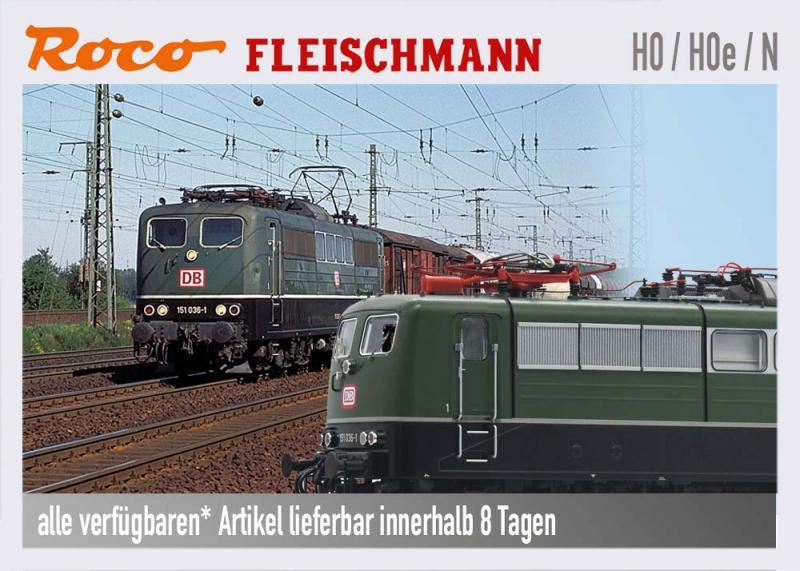 Roco Fleischmann Modellbahn H0 und N