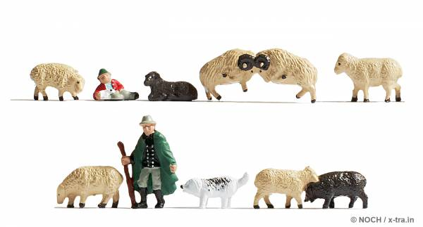 Schafe und Schäfer